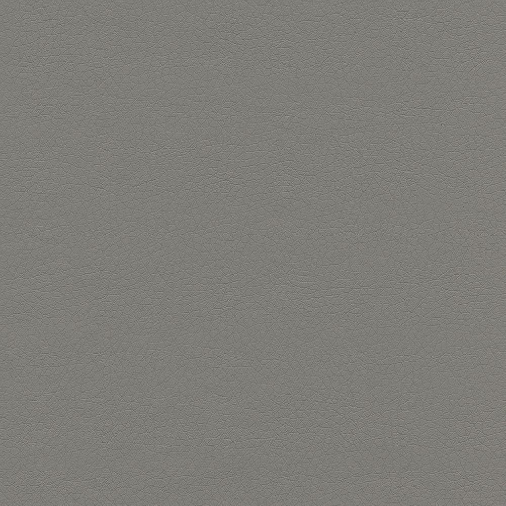 Light Gray Leather